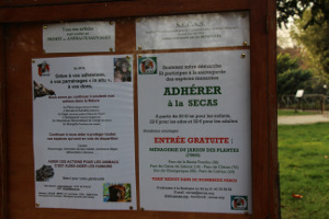 affiches SECAS