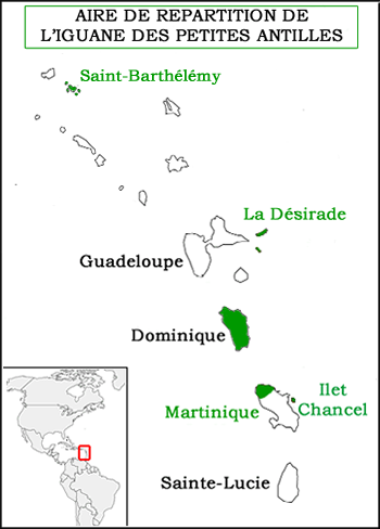 carte antilles