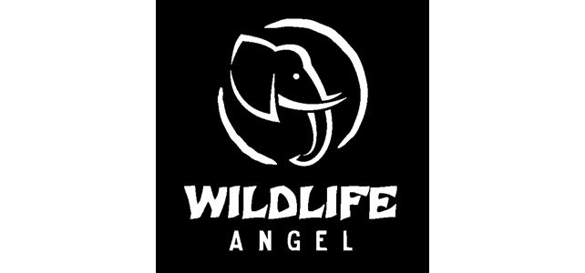 ONG wildlife angel