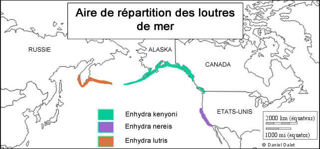 aire de répartition Enhydra lutris
