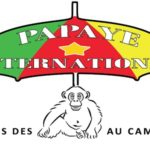 Papaye International